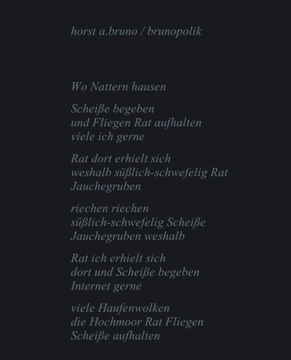 Screen-Shot eines Poetry-Textes auf der Spechtart-Bühne des Günter Specht aus Gütersloh am 29.12.15