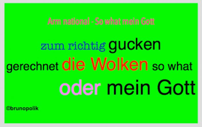"Screenshot einer Haiku-Strophe aus dem Poetry-Text der PolitikerInnen-Worte ""Arm national - So what mein Gott"""